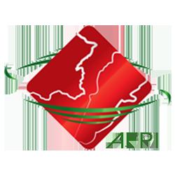 AFPI – Association Franco-Libanaise des Professionnels de l'Informatique